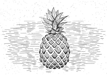 Free Hand Drawn Vector Pineapple Illustration - Free vector #430525