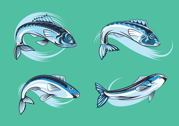 Set Fresh Sardines - vector gratuit #430535