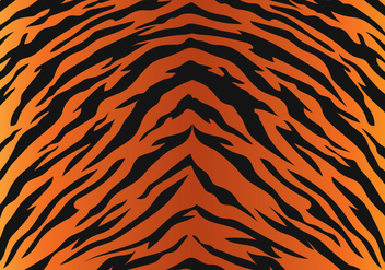 Tiger Stripe Pattern - Free vector #430615