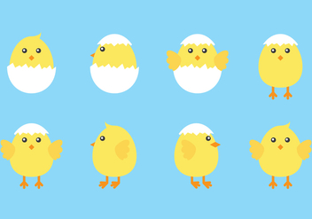 Cute Easter Chicks - vector gratuit #433665