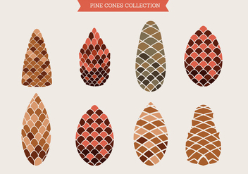 Pine Cones of Cedar Spruce Fir Christmas Tree Pine Set - Free vector #434105