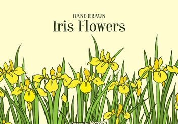Hand Drawn Yellow Iris Flowers Background - Kostenloses vector #434135