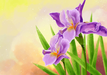 Hand Draw Iris Flower Illustration - Free vector #434925