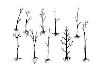 Free Tree Silhouette Vector - Free vector #435045