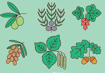 Herb And Spice Plant Vector - бесплатный vector #435905
