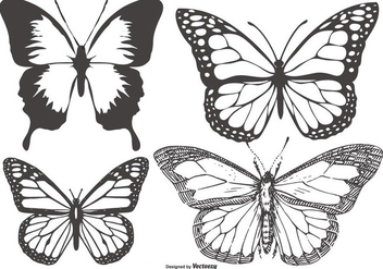 Vintage Butterfly/Mariposa Collection - vector #436305 gratis