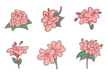 Free Beautiful Rhododendron Flower Vectors - vector gratuit #437305