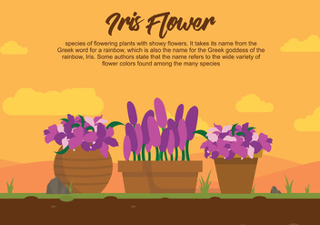 Iris Flower On Pot Illustartion - Free vector #437455