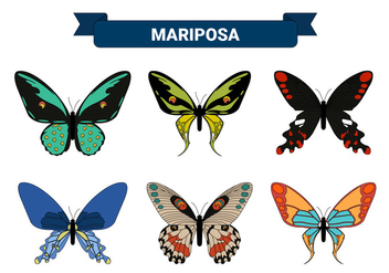 Colorful Butterfly Vector Collections - vector gratuit #437965