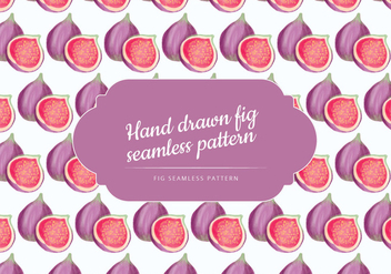 Vector Hand Drawn Figs Seamless Pattern - vector gratuit #438545
