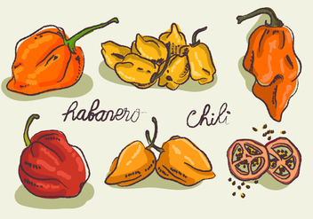 Hot Habanero Doodle Sketch Vector Illustration - Free vector #439565
