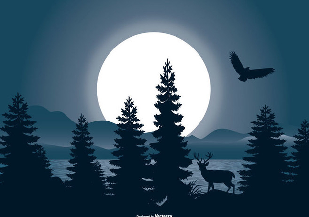 Beautiful Night Landscape Scene - Free vector #442515