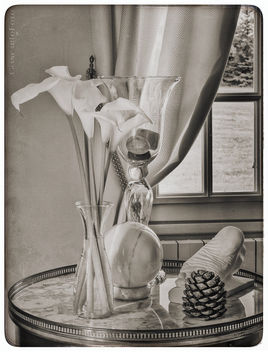 Nature Morte @home - image #445375 gratis