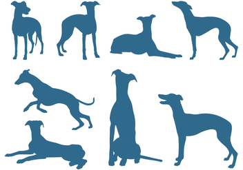 Silhouettes of Greyhound Dogs - Free vector #445695