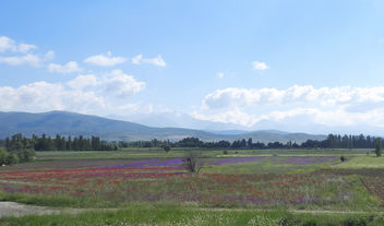 Turkey (Isparta) Panaromic view of Isparta Plain at spring - бесплатный image #446545
