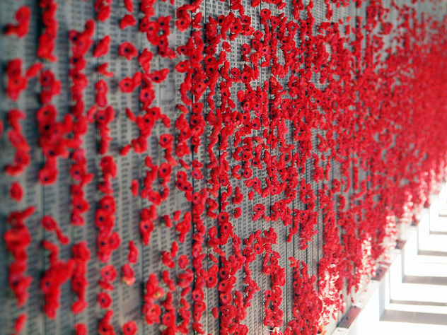 Poppies Left by Visitors to The Australian War Memorial - Free image #446825