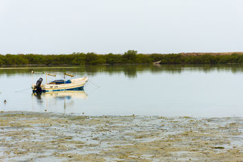 Anchored Boat near the Mangroves - Free image #447685