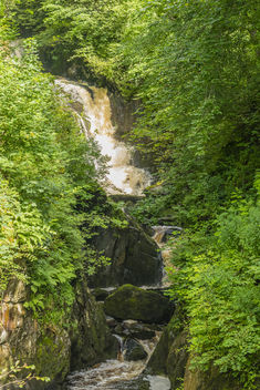Trees2-Ingleton Waterfalls - image #450235 gratis
