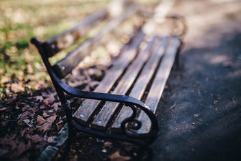 A bench in a park with bokeh background - image #450985 gratis
