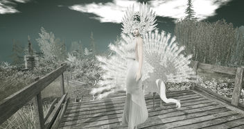 LOTD 85: Feathers (new releases & gifts) - image #452145 gratis