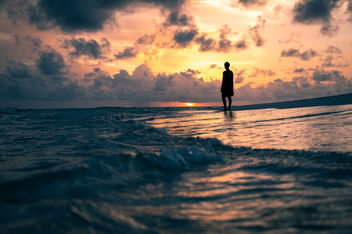 At sunset - Maldives - Travel photography - Kostenloses image #455595