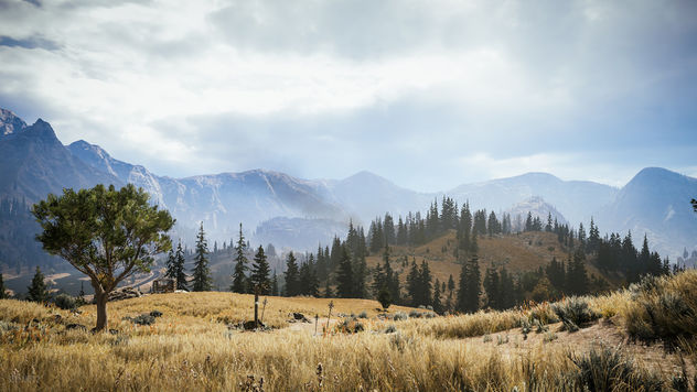 Far Cry 5 / A Far View - Free image #456195