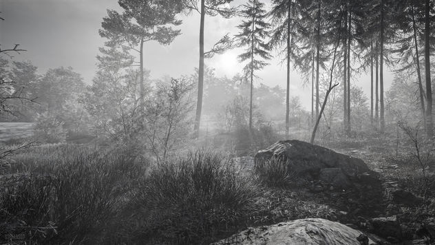 TheHunter: Call of the Wild / Misty Morning (Alt) - image #457585 gratis