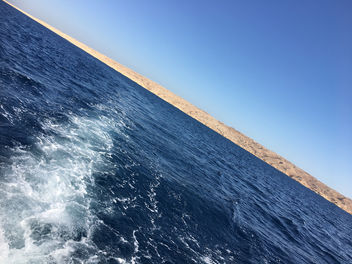 Fishing in the Red Sea - Free image #458585