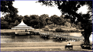 MacRitchie reservoir - the oldest reservoir in Singapore - image gratuit #459505