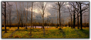 stormy weather - image gratuit #459725