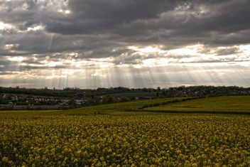 Rapeseeds farms, Burntwood, England - image #460885 gratis