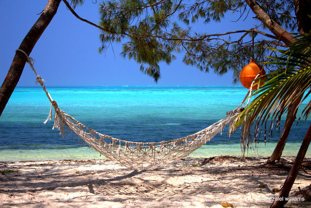 Resting time by iezalel williams - Isle of Pines in New Caledonia IMG_2693-001 - Canon EOS 700D - бесплатный image #461775