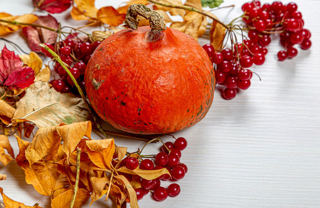 Dry-autumn-leaves-pumpkin-and-viburnum-berries-on-white-wooden-background.jpg - image #464505 gratis