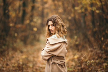 Portrait of young woman posing in a park. Young girl with yellow autumn leaves - image gratuit #465065