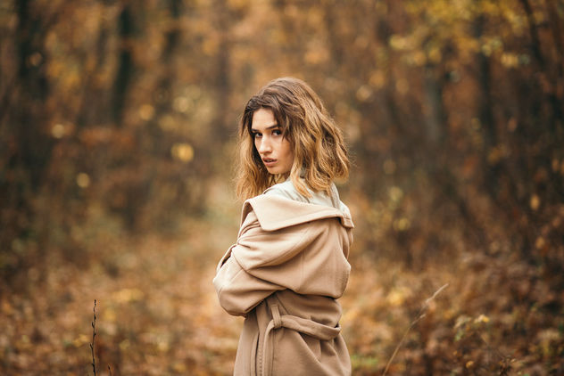 Portrait of young woman posing in a park. Young girl with yellow autumn leaves - image #465065 gratis