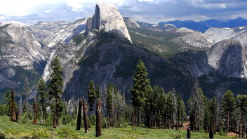 Yosemite National Park - image gratuit #468335