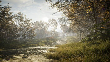 TheHunter: Call of the Wild / Nice Day For A Walk (Alt) - Kostenloses image #470845
